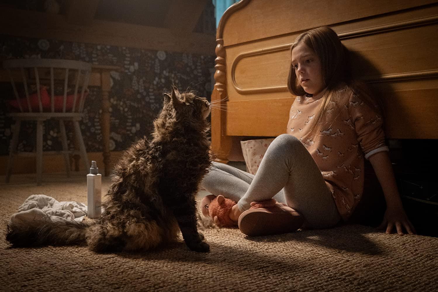 مشاهدة فيلم Pet Sematary (2019) مترجم HD اون لاين