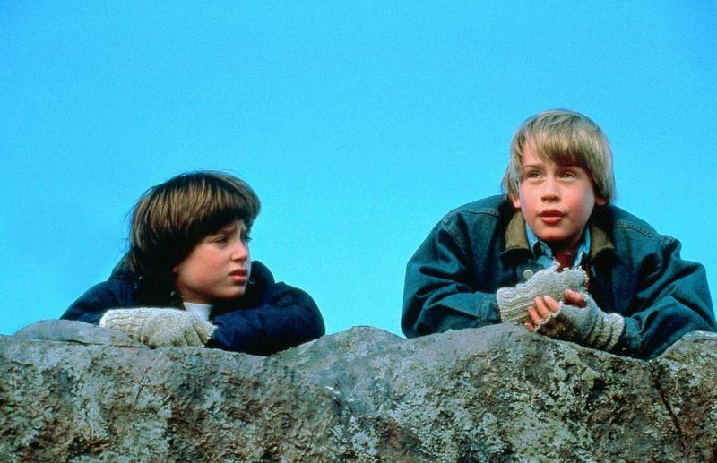 فيلم The Good Son 1993 مترجم