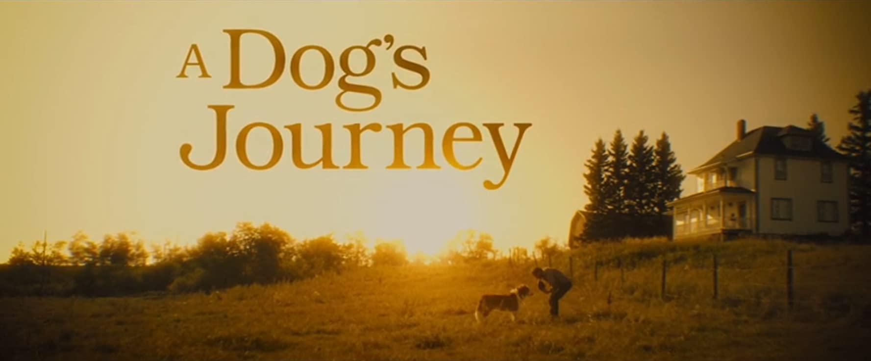 مشاهدة فيلم A Dog's Journey (2019) مترجم HD اون لاين
