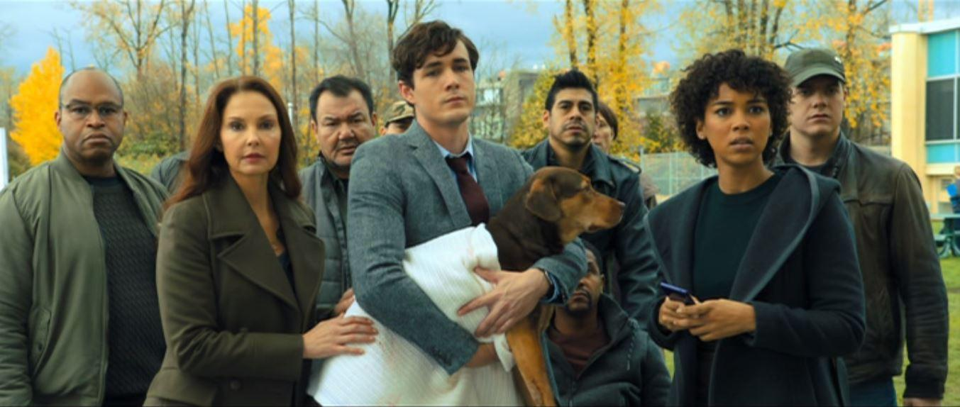 مشاهدة فيلم A Dog's Way Home (2019) مترجم HD اون لاين