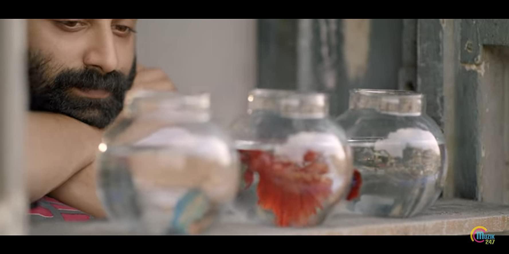 مشاهدة فيلم Trance (2020) مترجم HD اون لاين