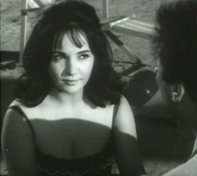 فيلم الزوجة 13 1962 HD DVD اون لاين